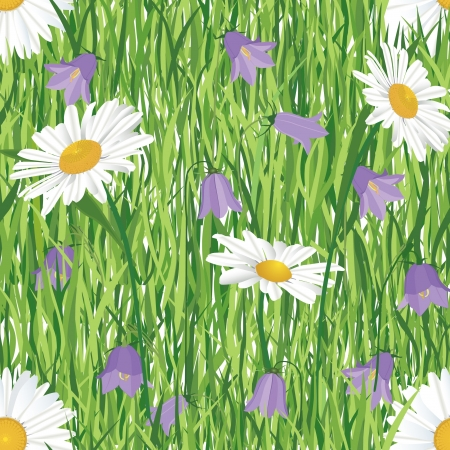 seamless floral pattern background with meadow flowers bluebell and chamomile on grass Stock Vector - 16510225