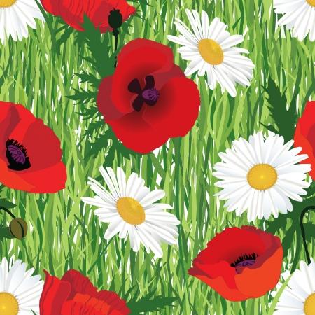 sem costura: padr�o uniforme com flores de papoila e camomila no fundo grama Ilustra��o
