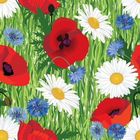 seamless floral pattern background with meadow flowers poppy, cornflower and chamomile on grass  Illustration