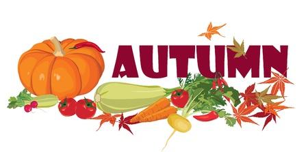 abundance: aumunt header  Ripe vegetables  Still life with autumn abundance  Illustration
