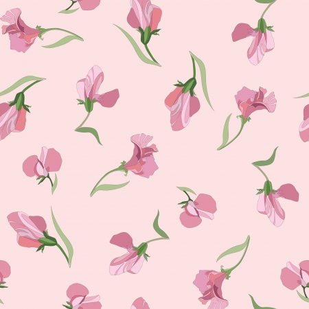 floral seamless pattern with lilac and pink flowers sweet peas Stock Vector - 17238156