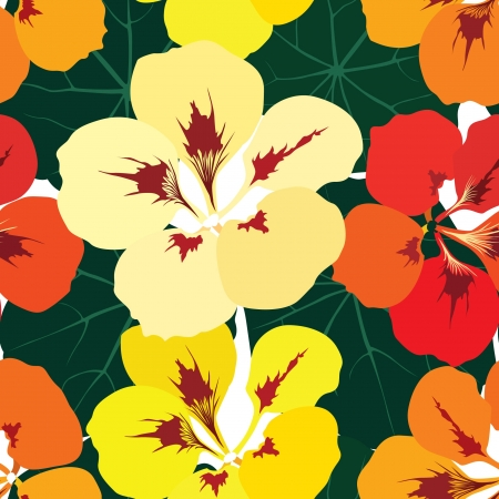 flower seamless pattern background with multicolor bouquet of flowers nasturtium Vector