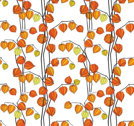 autumn floral seamless pattern background with abstract ornament winter cherry  Vector