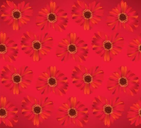 Flower gerbera red seamless background  Vector