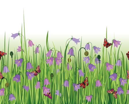 bluebell: Colorful fresh spring flowers seamless border  White seamless background  Grass, bluebell, butterfly  Decor edge  Summer