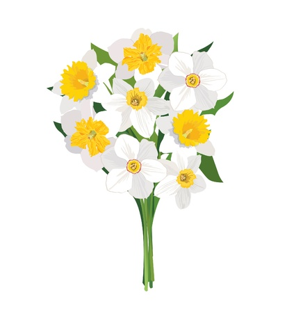 Flower bouquet isolated Vector