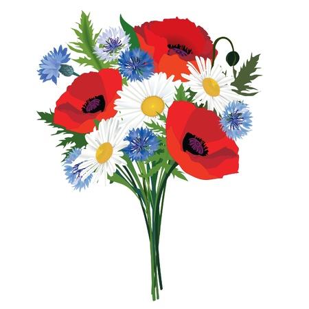 Bouquet di fiori isolati Chamomiles, papavero e fiordaliso