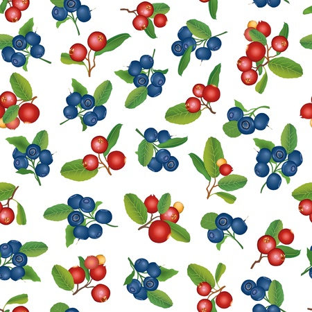 bog: Blueberry and cranberry bush seamless background  Berry pattern