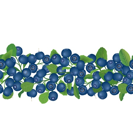 bog: Blueberry seamless border  Berry garland  Ripe berries with leaves  Scandinavian pattern  Cowberries  illustration