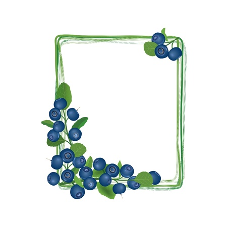 blueberries: Blueberry frame  Billberry bush border  Summer greeting card