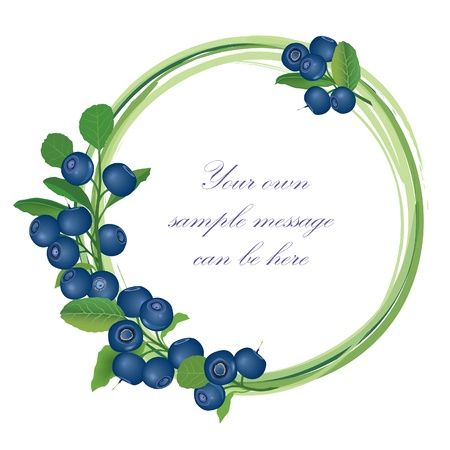 Blueberry frame   Billberry bush border   Summer greeting card  Stock Vector - 18320730