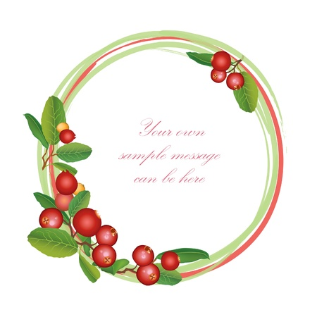 fruit jam: Cranberry frame  Berry round garland  Ripe red cranberries with leaves  Scandinavian card  Cowberries  illustration