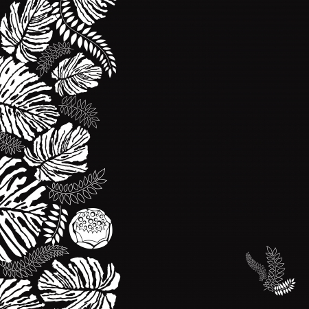 Floral black and white background  Leaves silhouettes border   Vector