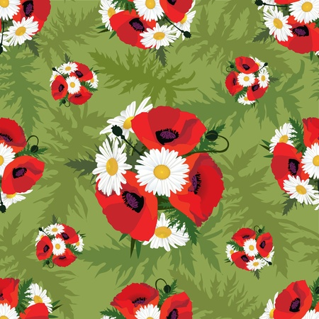 meadow flowers seamless pattern  Floral background  Poppy and chamomile  Vector