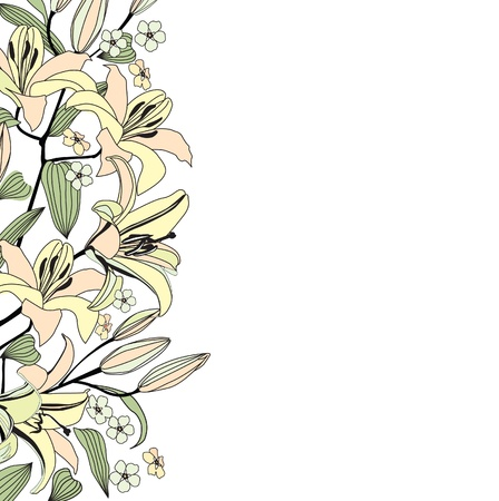 Flower lily background  White floral border  Flourish pattern Vector
