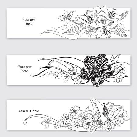 lily flowers: Fondo de la flor del Flourish de tarjeta ajustado frontera floral blanco