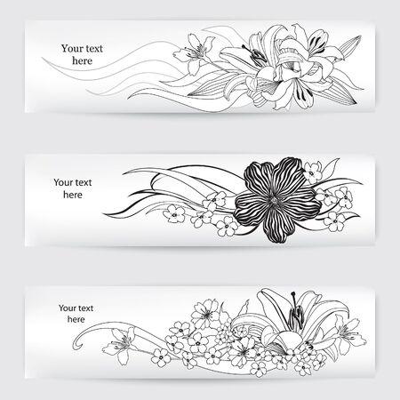 outline drawing: Flower background  Flourish card vector set  white floral border