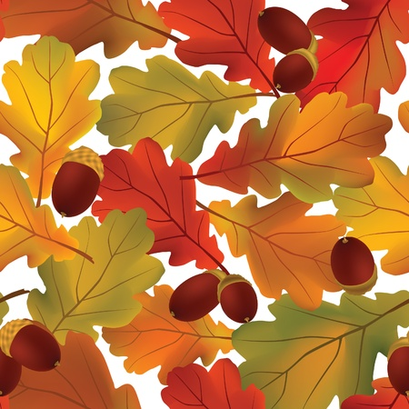 nut trees: Autumn  leaves seamless pattern  White floral background