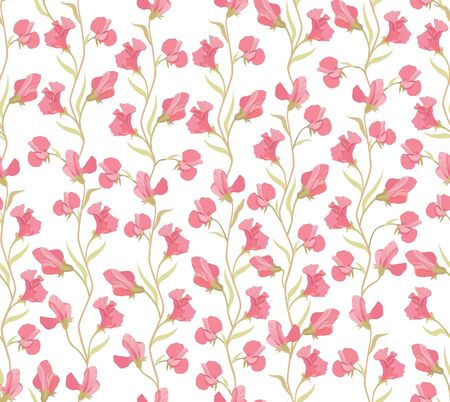 flower seamless background  floral seamless pattern with lilac and pink sweet pea