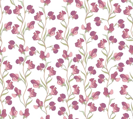 sweet pea: flower seamless background  floral seamless pattern with lilac and pink sweet pea