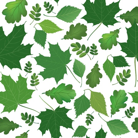Leaves seamless pattern  Summer green  background  Stock Vector - 19335382