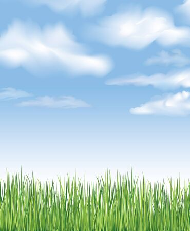 Blue sky with clouds and grass  Spring background  Vector