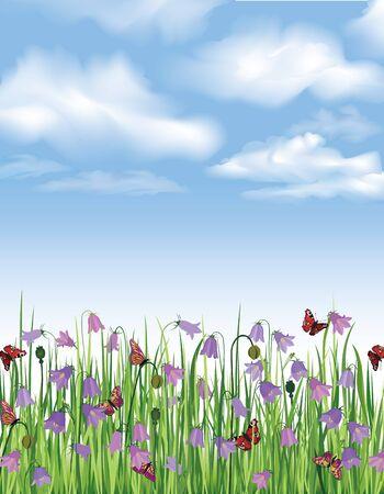 himmelsblå: Blå himmel med moln, gräs, blommor, blåklocka och fjäril Spring bakgrund