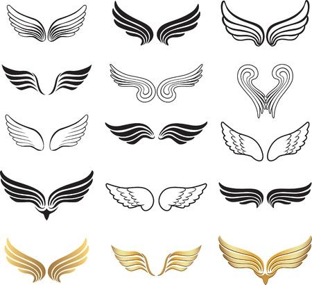 ali angelo: Ala set Vettoriali
