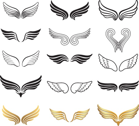 angel white: Wing set