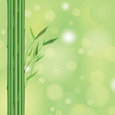pring: bamboo floral background