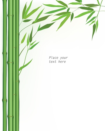 japanese ethnicity: bamboo floral background  vector floral wallpaper  Wooden border over white background with copy space