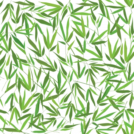 Bamboo leaves seamless pattern background  Vector
