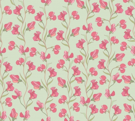 Floral seamless texture with sweet pea flowers Vector