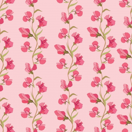 floral seamless pattern with lilac and pink sweet pea  Vector