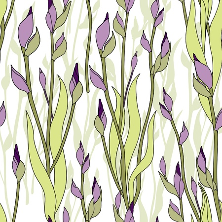 floral seamless pattern  flower iris bud background   Vector