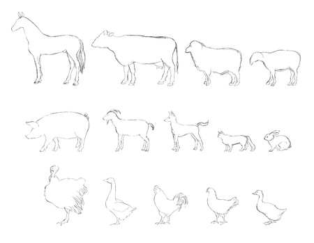 Farm animals sketch set  Vector
