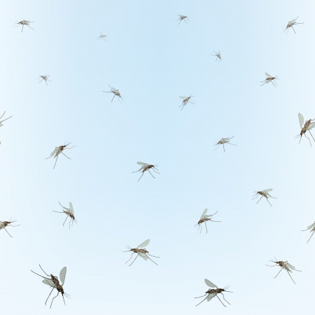 mosquitos: Mosquitos Seamless border  Mosquitos isolated on blue sky background  Incest pattern   Illustration