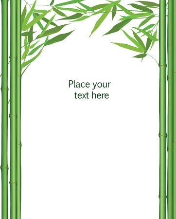 bamboo border:  bamboo frame with leaves decor  vector illustration isolated on white background  Illustration