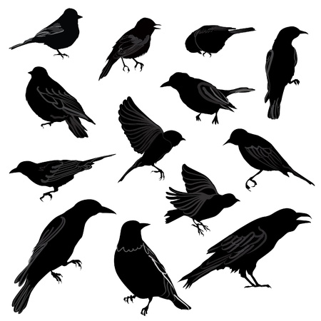 Set van vogels silhouet Vector illustratie Stock Illustratie