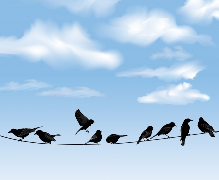 Conjunto de pájaros en los alambres sobre fondo de cielo azul Una ilustración vectorial