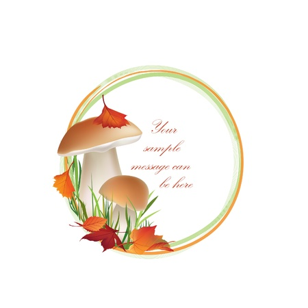 boletus: Autumn frame  Mushrooms vector background with copy space  Floral fall border isolated on white background Food illustration