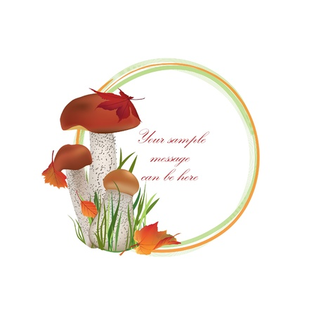Autumn frame  Mushrooms vector background with copy space  Floral fall border isolated on white background Food illustration   Stock Vector - 21604193