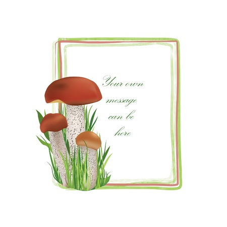 Mushrooms frame isolated over white background  Boletus floral summer border set  Forest background with copy space Stock Vector - 21604206
