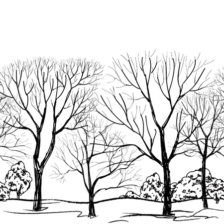 Tree without leaves seamless border  Forest seamless background  Branches isolated on white  Hand drawn vector illustration