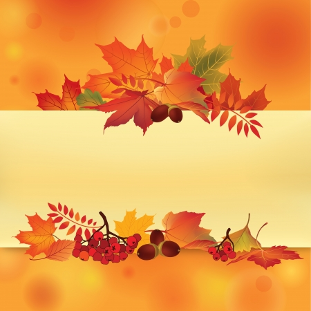 Autumn background with leaves and rowan  Back to school  Vector illustration  Fall set