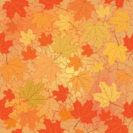curled up: Autumn background with maple leaves seamless pattern  Fall set   Illustration