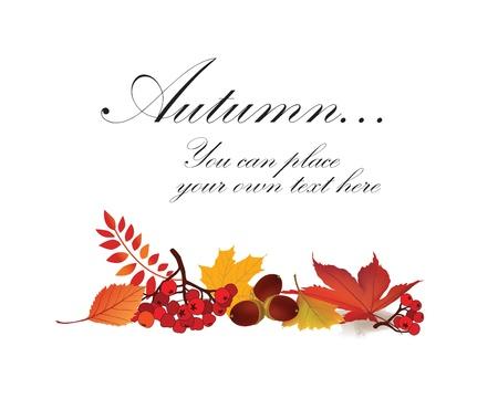 dode bladeren: Esdoornblad herfst vector frame met kopie ruimte op een witte achtergrond Fall set