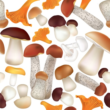 Autumn Seamless Texture with mushroom pattern  Mushrooms vector repeating background Stock Vector - 22204623