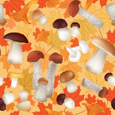 Autumn Seamless Texture with mushroom pattern  Mushrooms vector repeating background   Stock Vector - 22204622