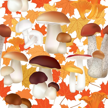 Autumn Seamless Texture with mushroom pattern  Mushrooms vector repeating background   Stock Vector - 22204624